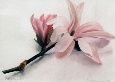 Susanna Battistella - Magnolia